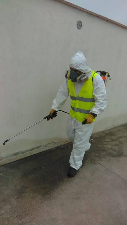 Fotos de Fumigaciones y desinfecciones efectivas garantizadas e inmediatas eko planeet 3
