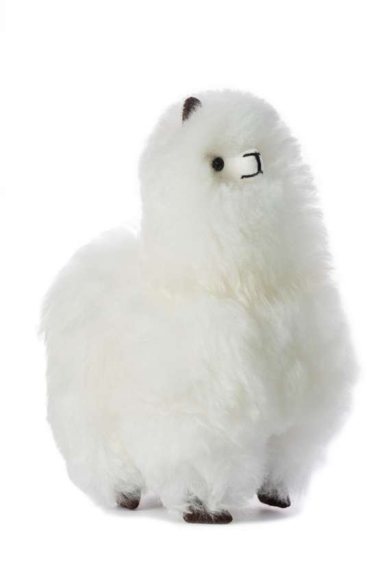 Peluches acogedores ideales para usted