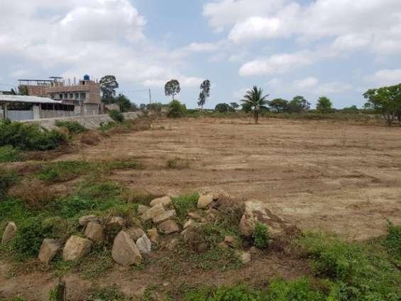 Venta de terreno comercial en aguas verdes, tumbes